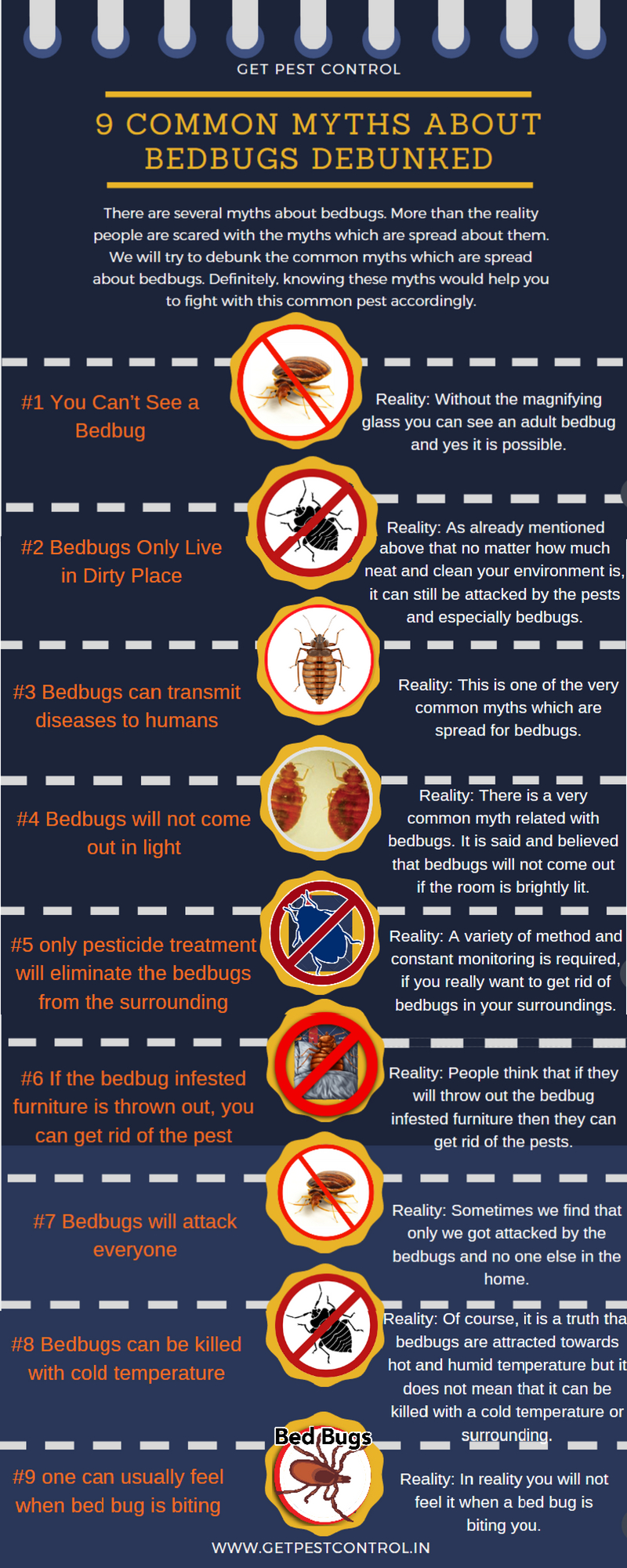 9 Common Myths about Bedbugs Debunked Infograph
