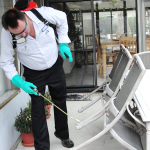 Hotels Pest Services