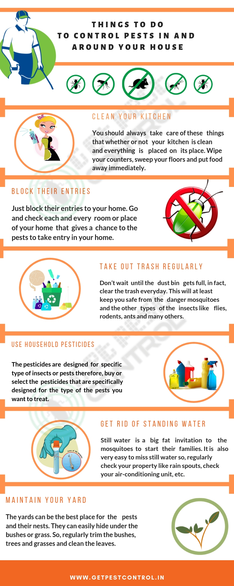 Things to do to control pest infographs