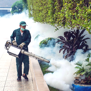 fumigation-services