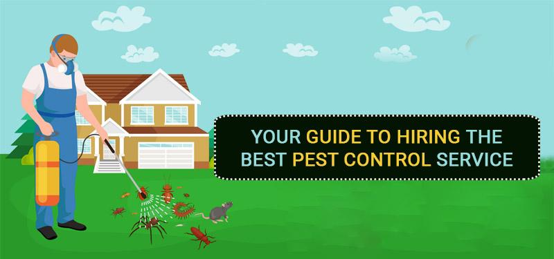 pest-control-service-hiring-guide