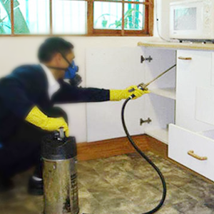 residential-pest-control-service