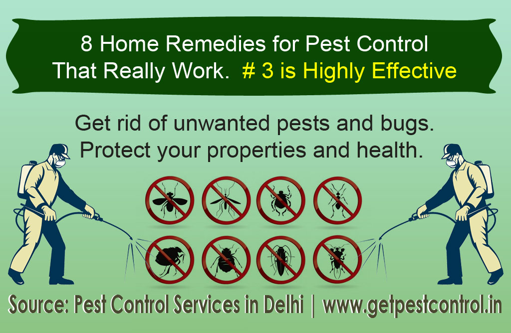 8 home remedies for Pset control