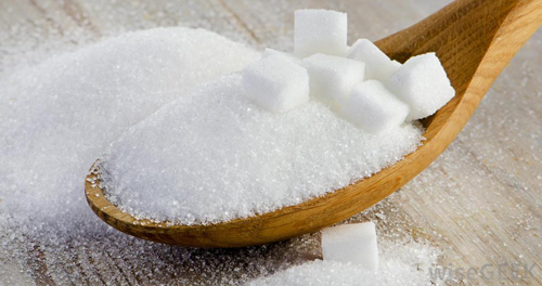 Borax and sugar to control ants