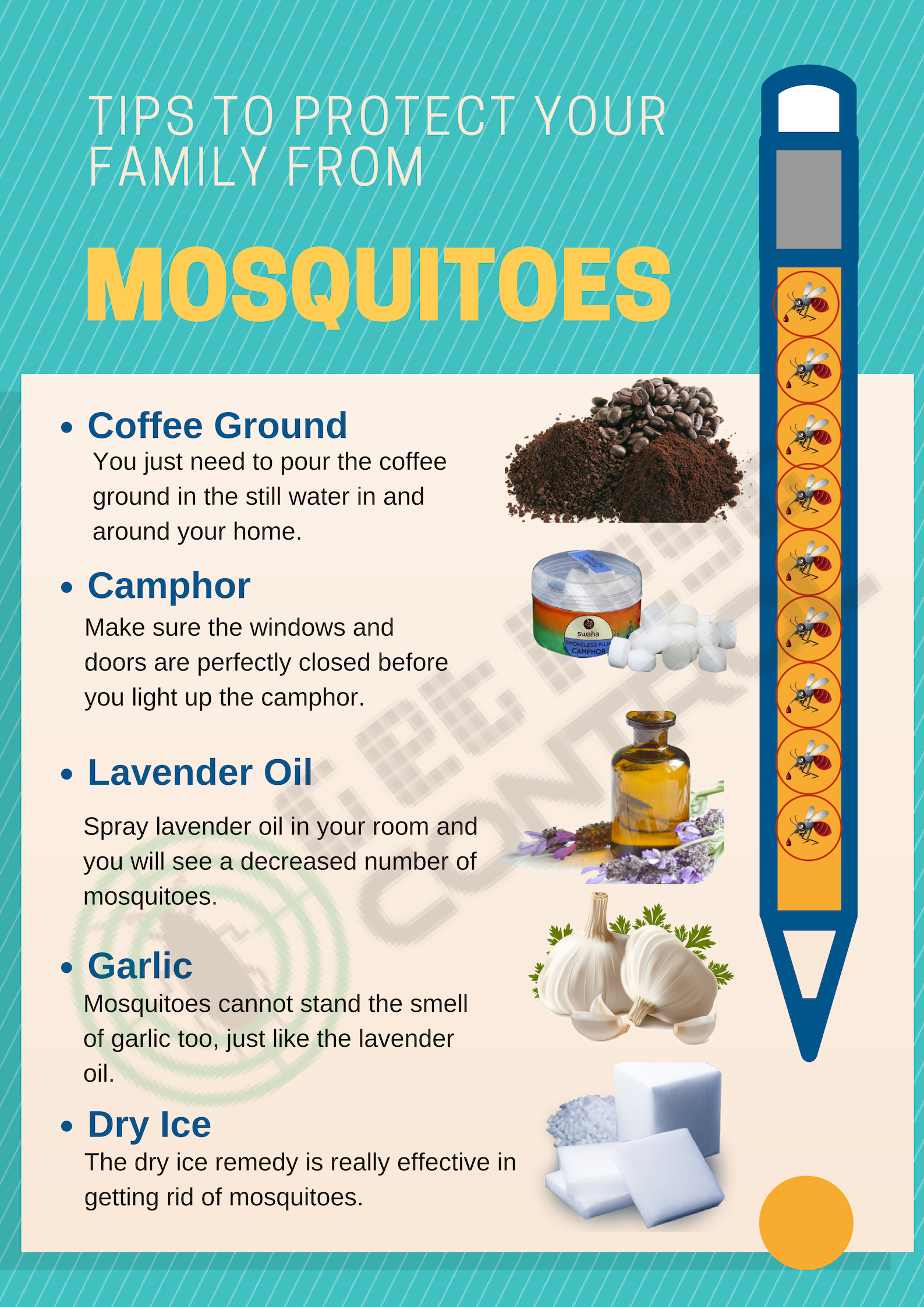 How to Protect Your Family from Mosquitoes? - Get Pest Control