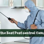 Hiring the Best Pest Control Company to Eradicate Pests & Bugs