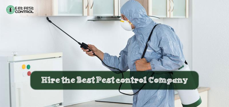 best-pest-control-company