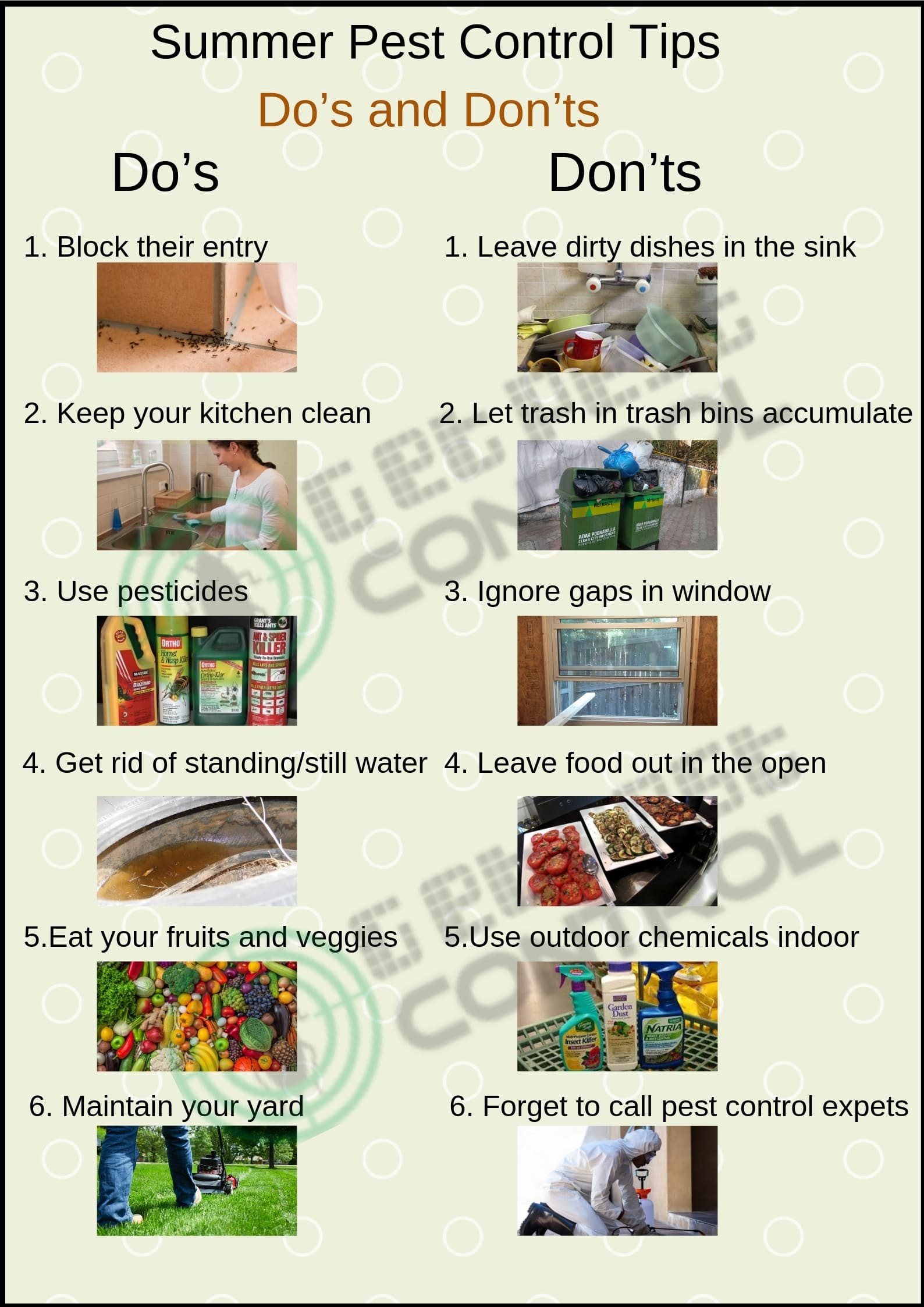 Pest Control Tips: Do's and Don'ts for This Summer Season