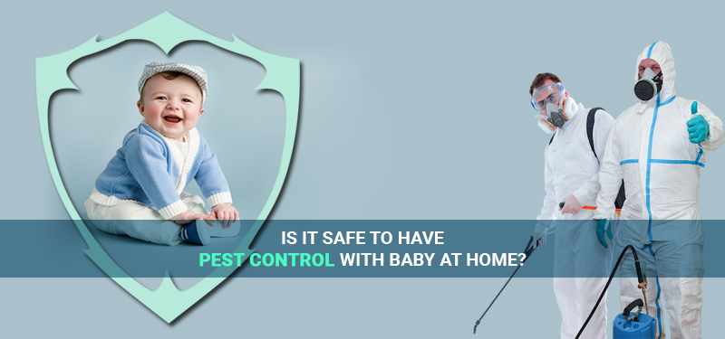 pest-control-with-baby-at-home