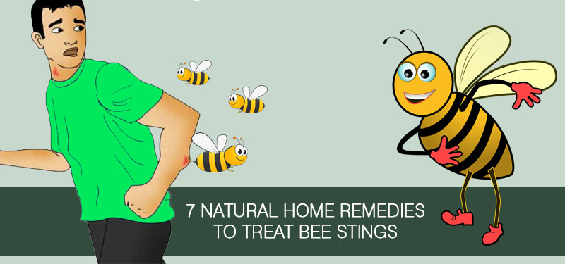 home-remedies-for-bee-stings