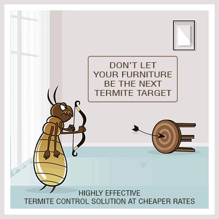 termite-control-services