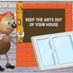 9 Genius Ways to Keep the Ants Out of Your House